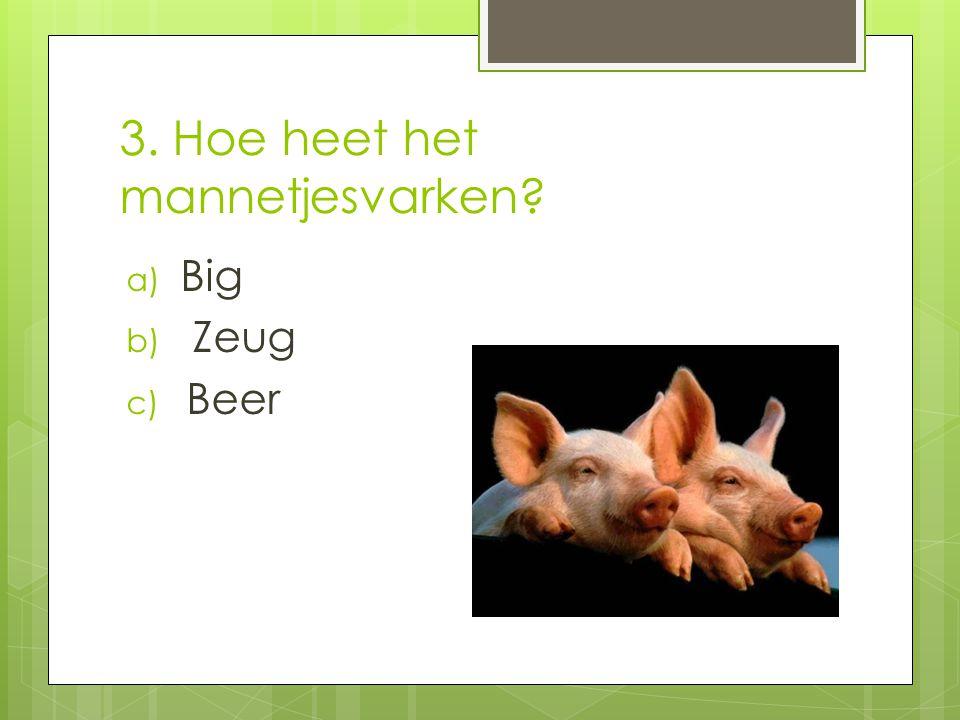 4. Een varken is een… a) Zoogdier b) Amfibie c) Vogel