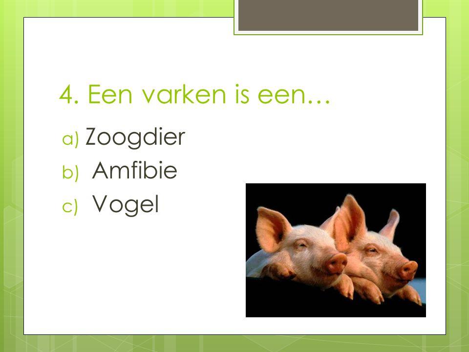 5. Waarom wordt de staart van het varken al vroegtijdig afgeknipt?