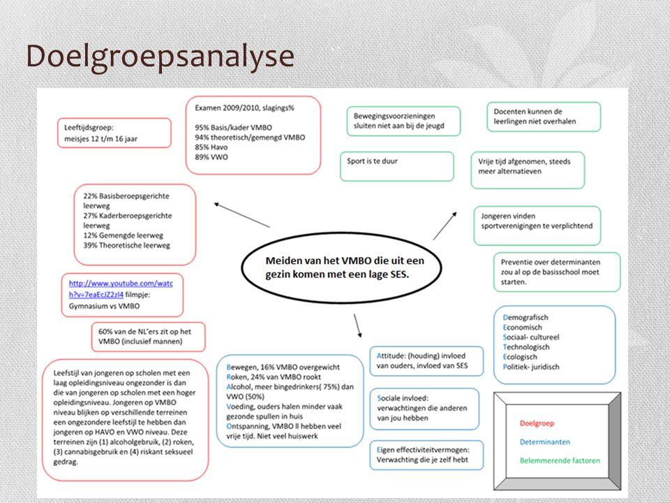 Doelgroepsanalyse