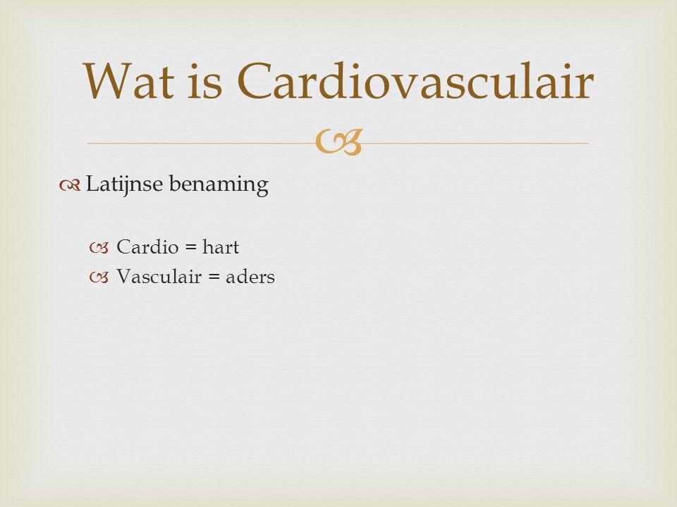   Latijnse benaming  Cardio = hart  Vasculair = aders Wat is Cardiovasculair