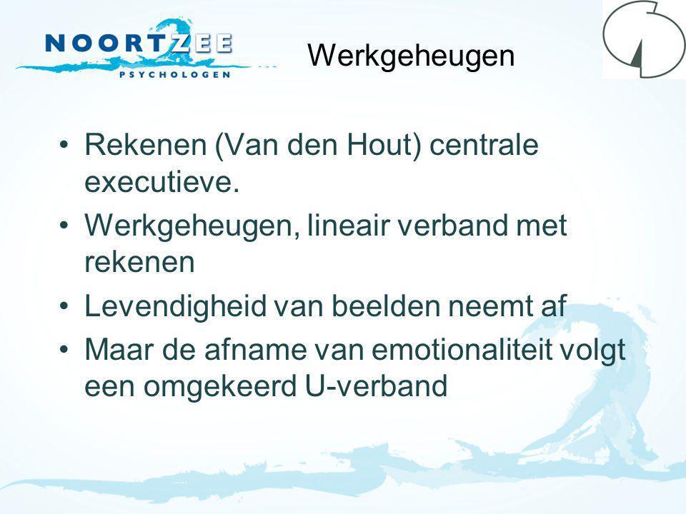 Werkgeheugen Rekenen (Van den Hout) centrale executieve.