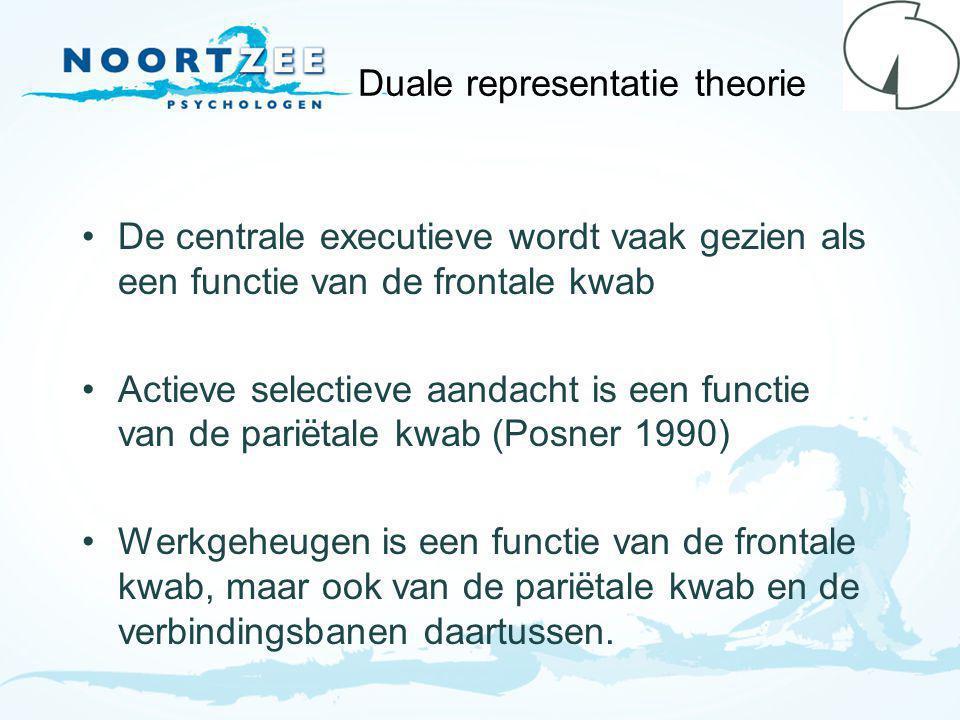 Duale representatie theorie De centrale executieve wordt vaak gezien als een functie van de frontale kwab Actieve selectieve aandacht is een functie van de pariëtale kwab (Posner 1990) Werkgeheugen is een functie van de frontale kwab, maar ook van de pariëtale kwab en de verbindingsbanen daartussen.