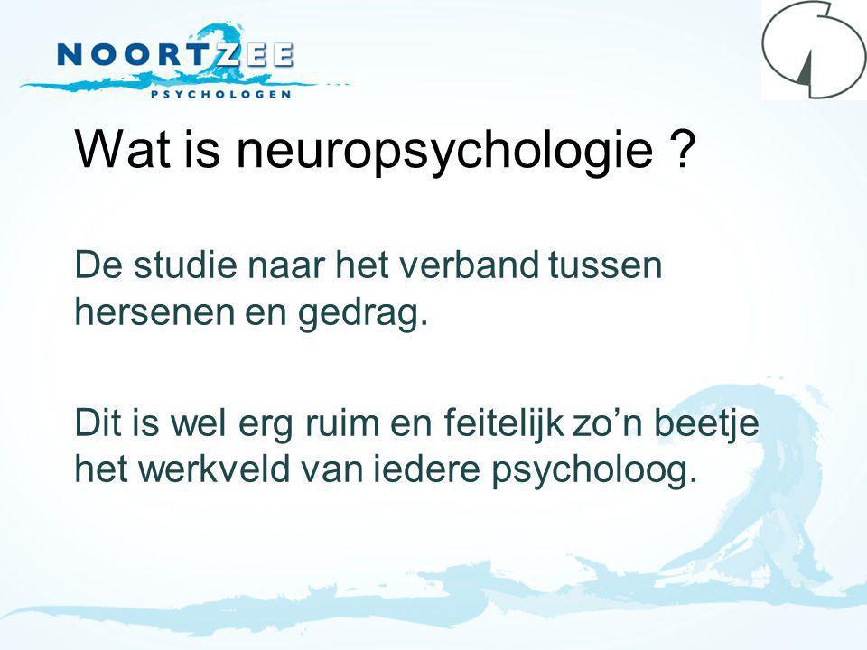 Wat is neuropsychologie .De studie naar het verband tussen hersenen en gedrag.
