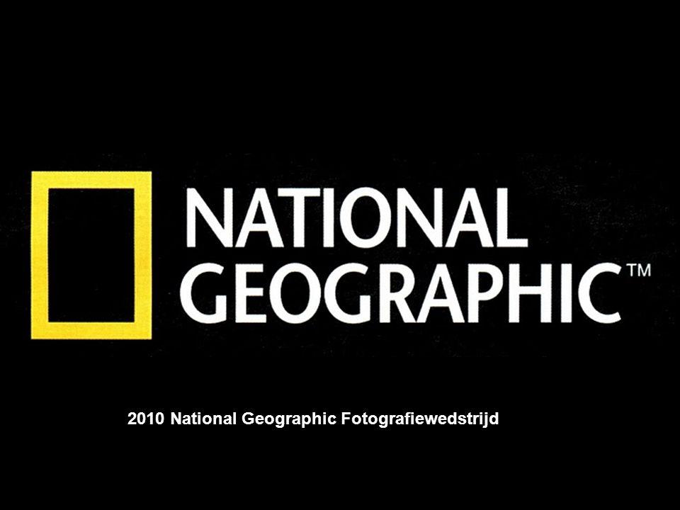 Album photo par Jojo et Gilles 2010 National Geographic Fotografiewedstrijd
