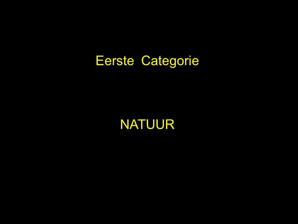Eerste Categorie NATUUR