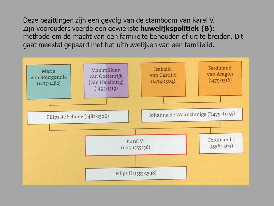 Deze bezittingen zijn een gevolg van de stamboom van Karel V. Zijn voorouders voerde een gewiekste huwelijkspolitiek (B): methode om de macht van een