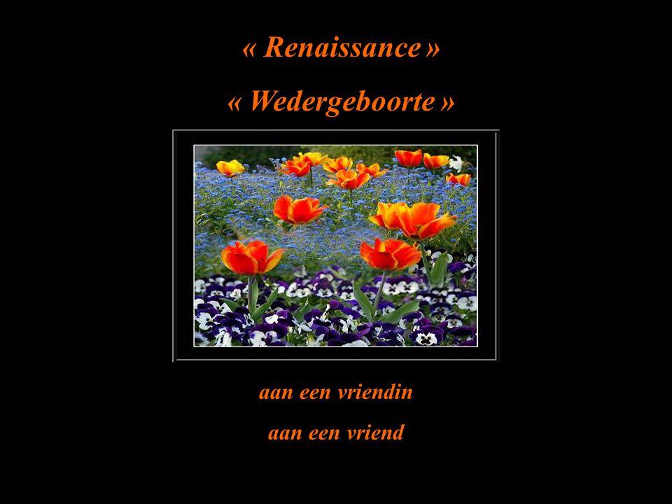 « Renaissance » « Wedergeboorte » aan een vriendin aan een vriend