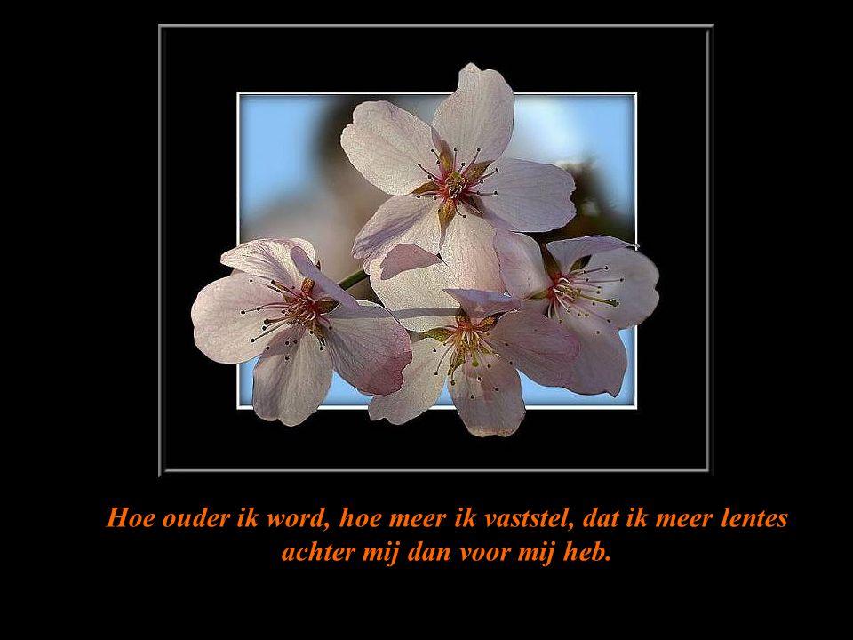 Hoe ouder ik word, hoe meer ik vaststel, dat ik meer lentes achter mij dan voor mij heb.