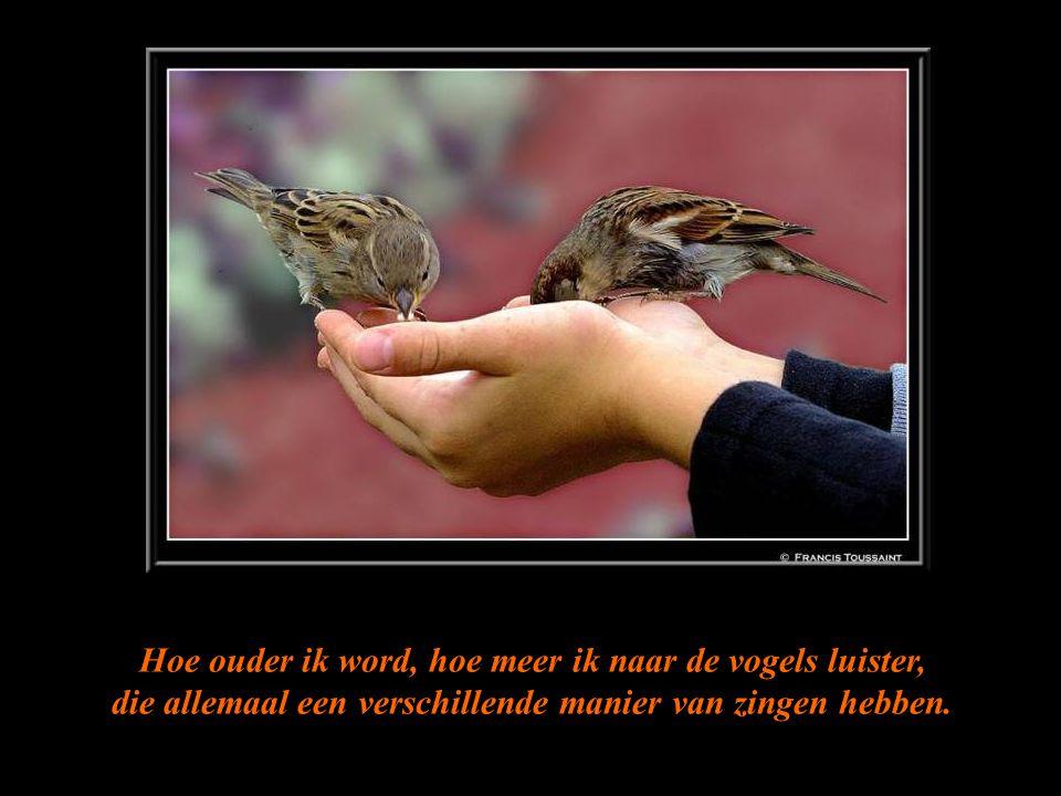 Hoe ouder ik word, hoe meer ik naar de vogels luister, die allemaal een verschillende manier van zingen hebben.