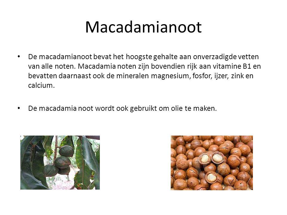 Macadamianoot De macadamianoot bevat het hoogste gehalte aan onverzadigde vetten van alle noten. Macadamia noten zijn bovendien rijk aan vitamine B1 e