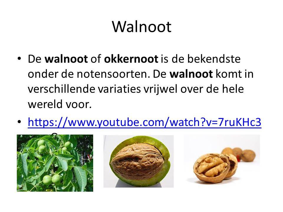 Walnoot De walnoot of okkernoot is de bekendste onder de notensoorten. De walnoot komt in verschillende variaties vrijwel over de hele wereld voor. ht