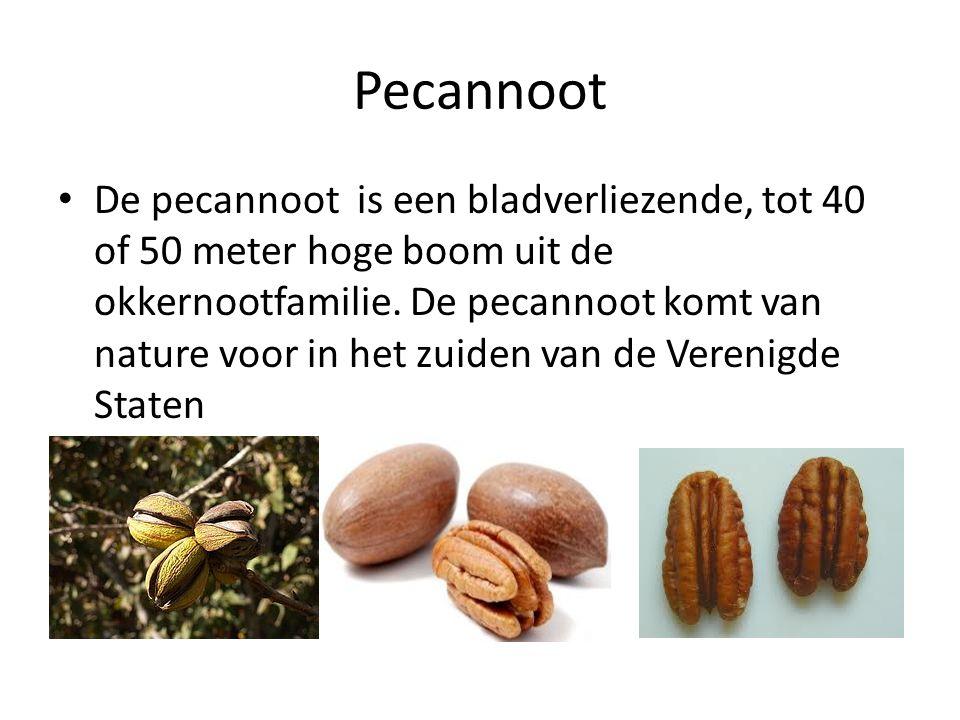 Pecannoot De pecannoot is een bladverliezende, tot 40 of 50 meter hoge boom uit de okkernootfamilie. De pecannoot komt van nature voor in het zuiden v