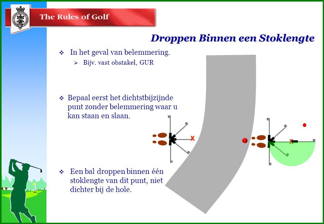 Droppen Binnen een Stoklengte  Bepaal eerst het dichtstbijzijnde punt zonder belemmering waar u kan staan en slaan.