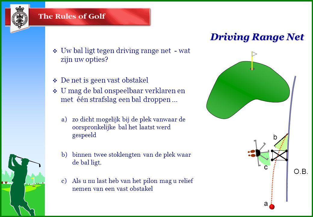 Driving Range Net  Uw bal ligt tegen driving range net - wat zijn uw opties.