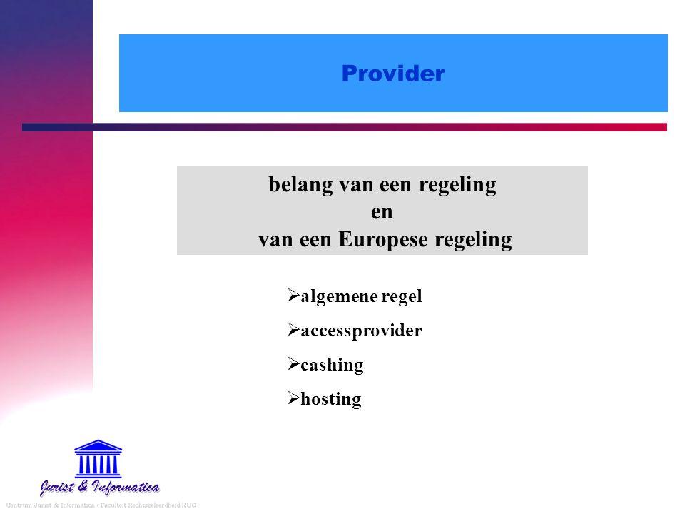 Provider belang van een regeling en van een Europese regeling  algemene regel  accessprovider  cashing  hosting