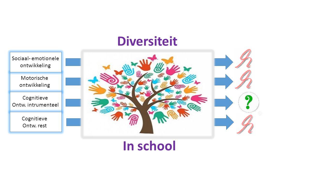 Diversiteit Sociaal- emotionele ontwikkeling Motorische ontwikkeling Cognitieve Ontw. rest In school Cognitieve Ontw. intrumenteel