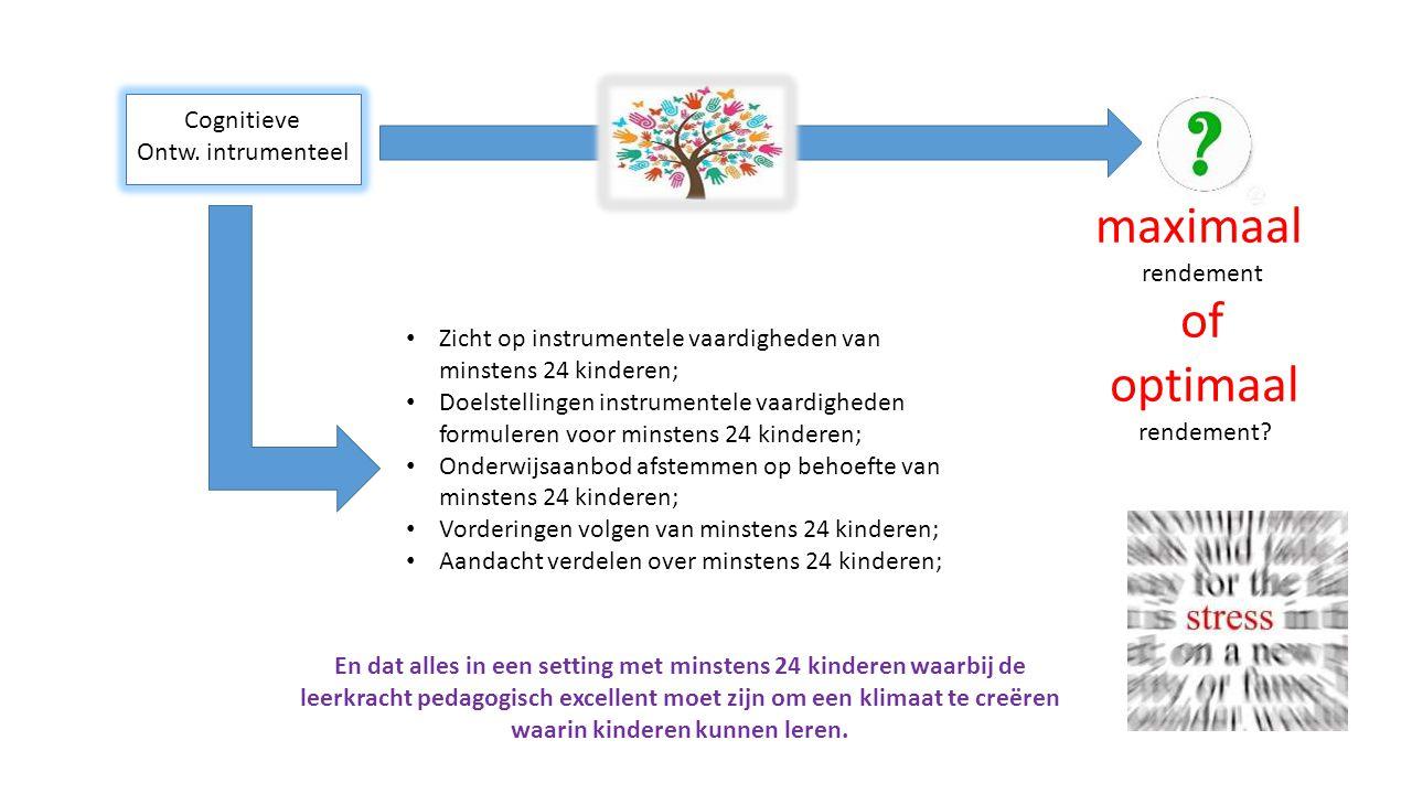 Cognitieve Ontw. intrumenteel Zicht op instrumentele vaardigheden van minstens 24 kinderen; Doelstellingen instrumentele vaardigheden formuleren voor