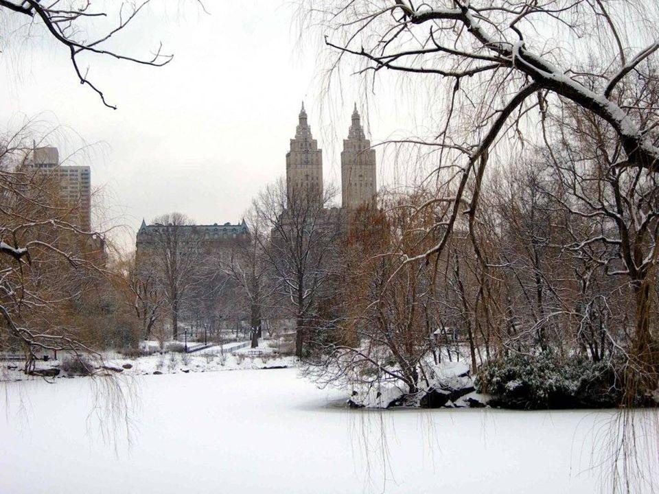 ...maar ook winter!!!