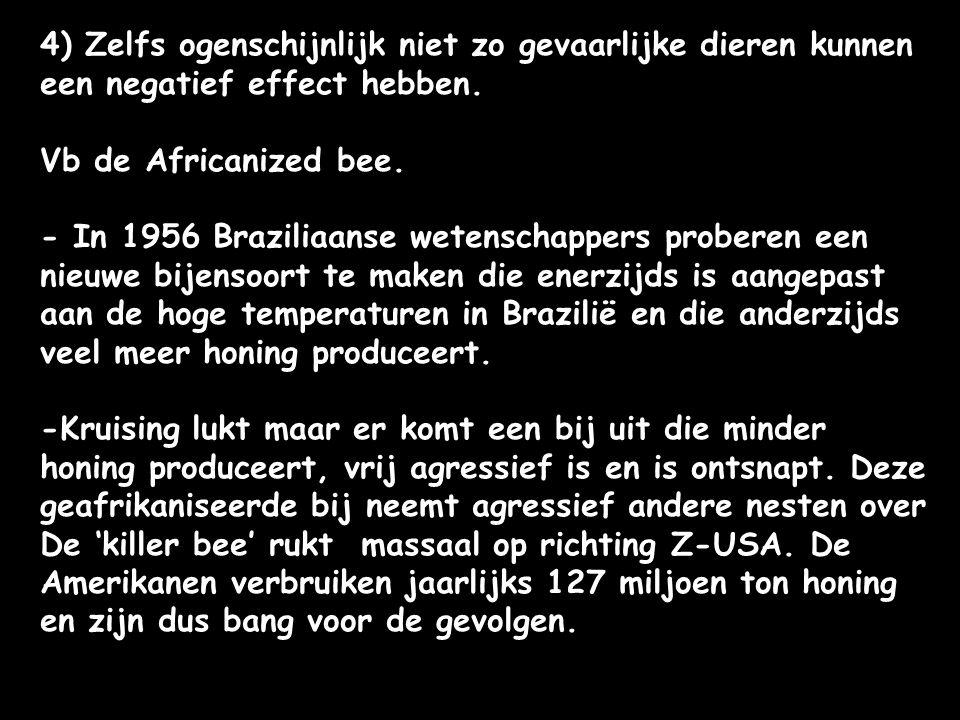 4) Zelfs ogenschijnlijk niet zo gevaarlijke dieren kunnen een negatief effect hebben. Vb de Africanized bee. - In 1956 Braziliaanse wetenschappers pro