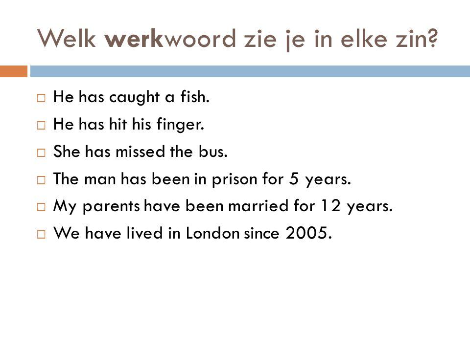 Vorm van 'have'  He has caught a fish. He has hit his finger.
