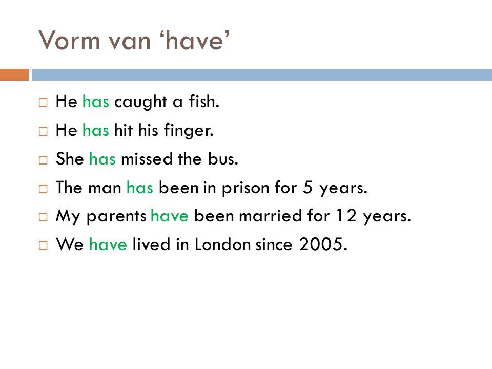 Vorm van 'have' + voltooid deelwoord  He has caught a fish.