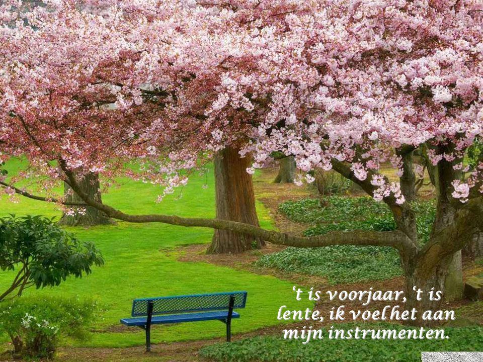 't is voorjaar, 't is lente, ik voel het aan mijn instrumenten.