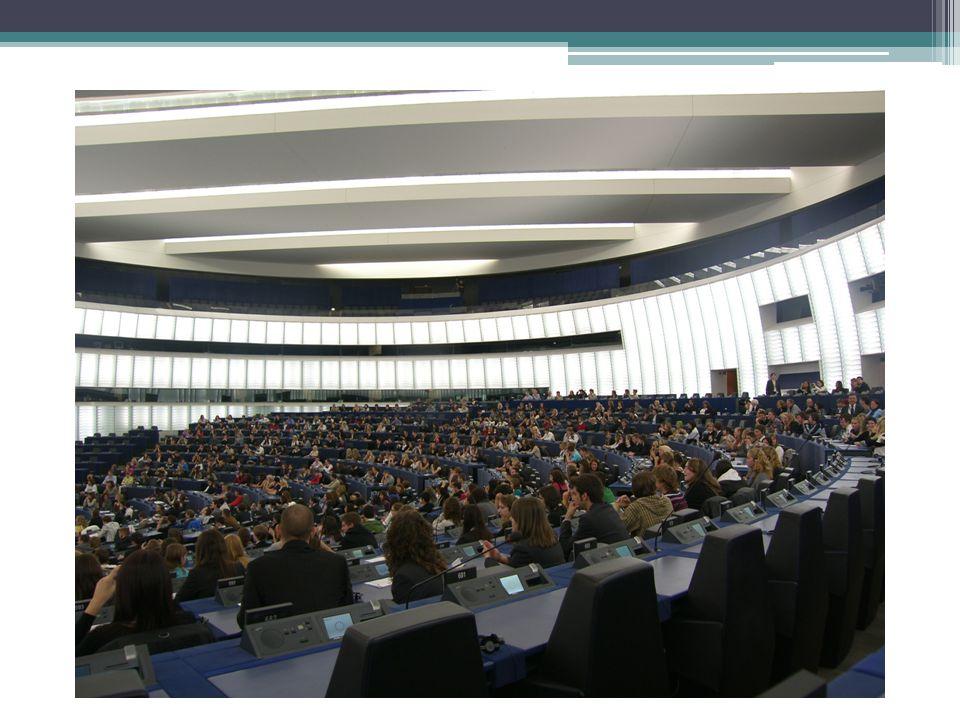 Raad van Ministers:  Alle lidstaten zitten hierin.
