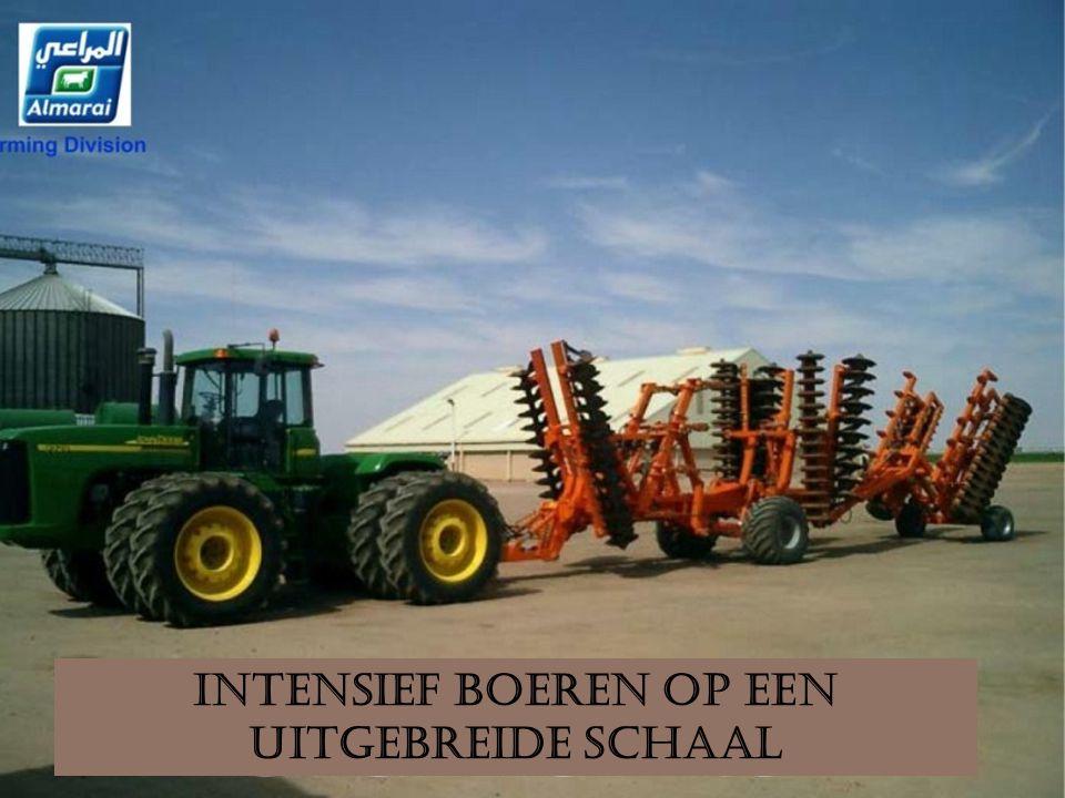 2009 Opbrengst. Alfalfa productie. Snijmaïs. Rhodes gras