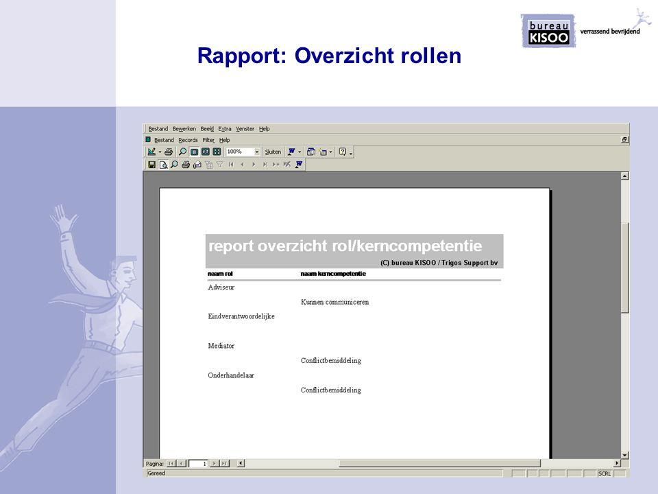 Rapport: Overzicht rollen