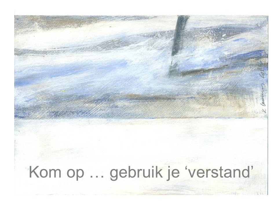 beeld en tekst: Koen Lemmens productie: VSKO - Dienst Opvoedingsproject en Pastoraal 25