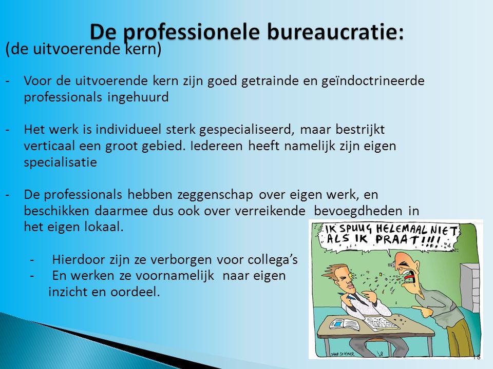 18 (de uitvoerende kern) -Voor de uitvoerende kern zijn goed getrainde en geïndoctrineerde professionals ingehuurd -Het werk is individueel sterk gespecialiseerd, maar bestrijkt verticaal een groot gebied.