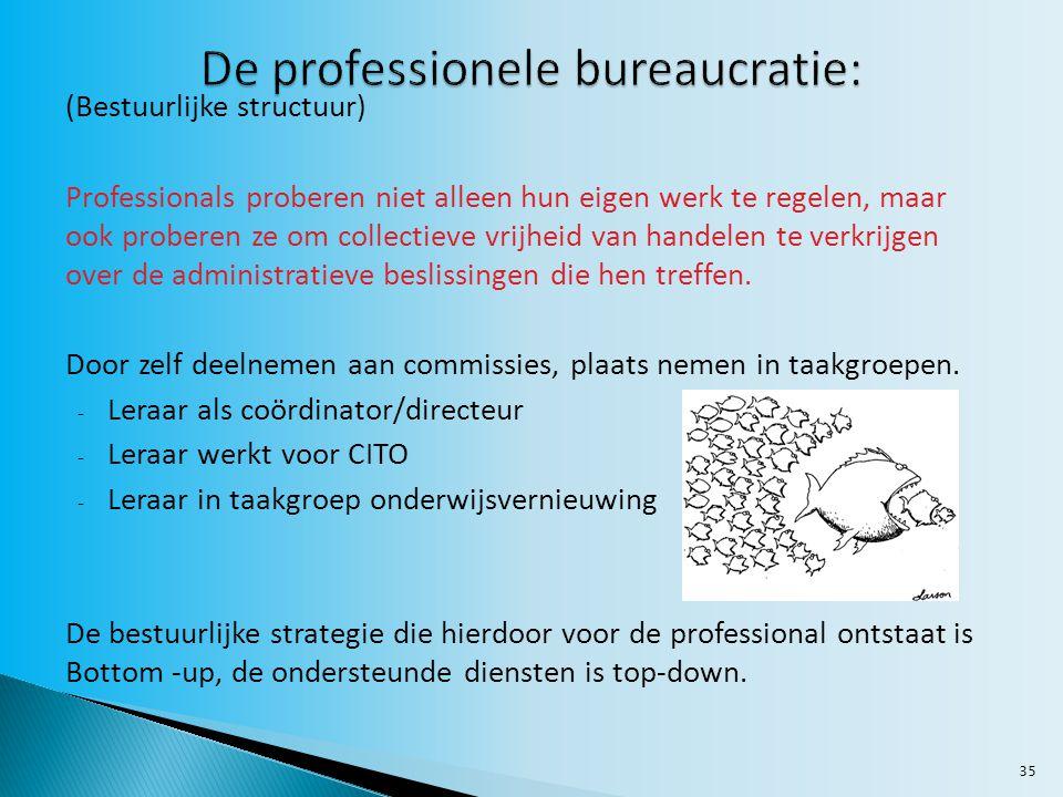 35 (Bestuurlijke structuur) Professionals proberen niet alleen hun eigen werk te regelen, maar ook proberen ze om collectieve vrijheid van handelen te verkrijgen over de administratieve beslissingen die hen treffen.