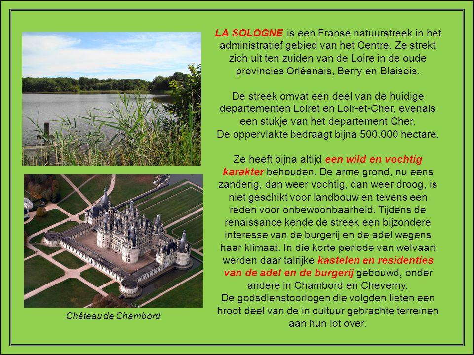 Vertaald uit het Frans - Freddy Storm 09/2010