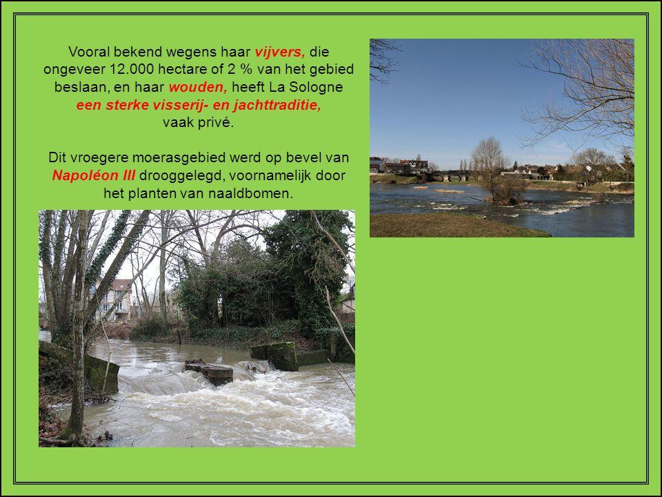 LA SOLOGNE is een Franse natuurstreek in het administratief gebied van het Centre. Ze strekt zich uit ten zuiden van de Loire in de oude provincies Or