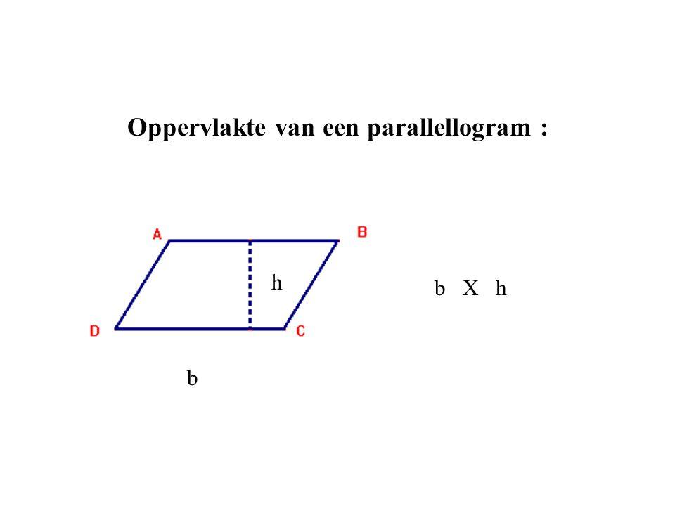 Oppervlakte van een parallellogram : b b X h h