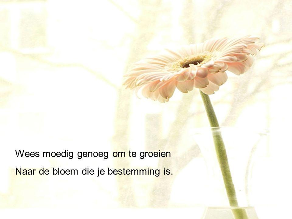 Wees moedig genoeg om te groeien Naar de bloem die je bestemming is.