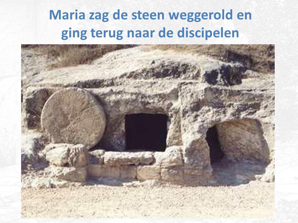 Maria zag de steen weggerold en ging terug naar de discipelen