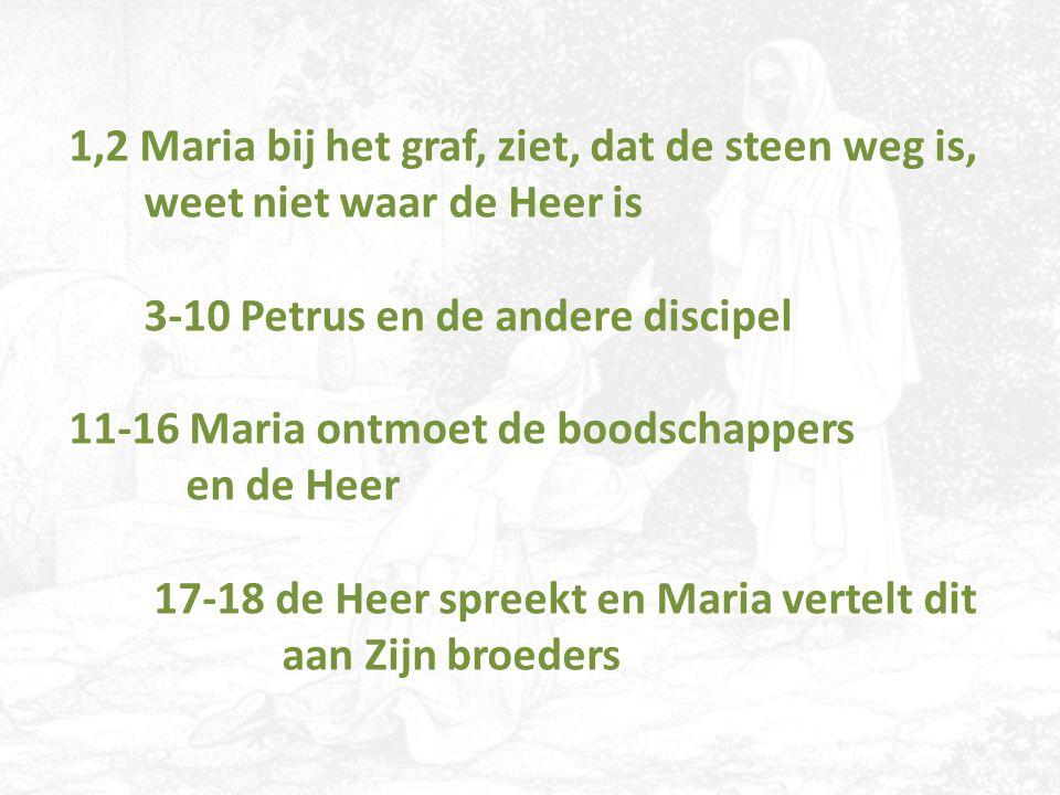 1,2 Maria bij het graf, ziet, dat de steen weg is, weet niet waar de Heer is 3-10 Petrus en de andere discipel 11-16 Maria ontmoet de boodschappers en