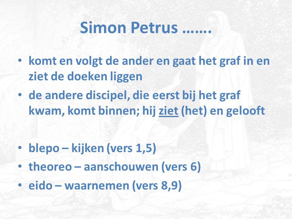 Simon Petrus ……. komt en volgt de ander en gaat het graf in en ziet de doeken liggen de andere discipel, die eerst bij het graf kwam, komt binnen; hij