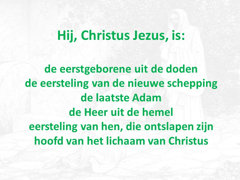Hij, Christus Jezus, is: de eerstgeborene uit de doden de eersteling van de nieuwe schepping de laatste Adam de Heer uit de hemel eersteling van hen,