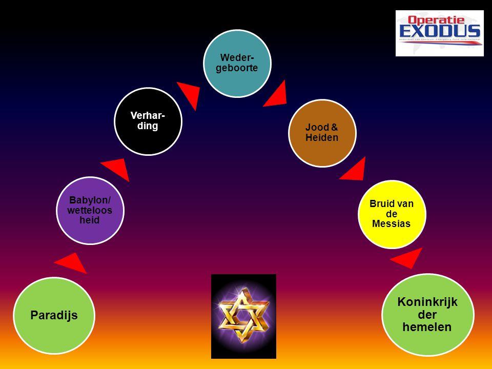 Paradijs Babylon/w ettelooshei d Verhar- ding Weder- geboorte Jood & Heiden Bruid van de Messias Koninkrijk der hemelen