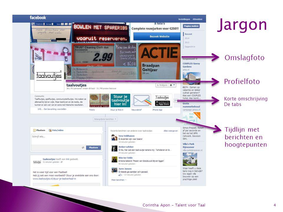 4 Omslagfoto Profielfoto Korte omschrijving De tabs Tijdlijn met berichten en hoogtepunten Jargon