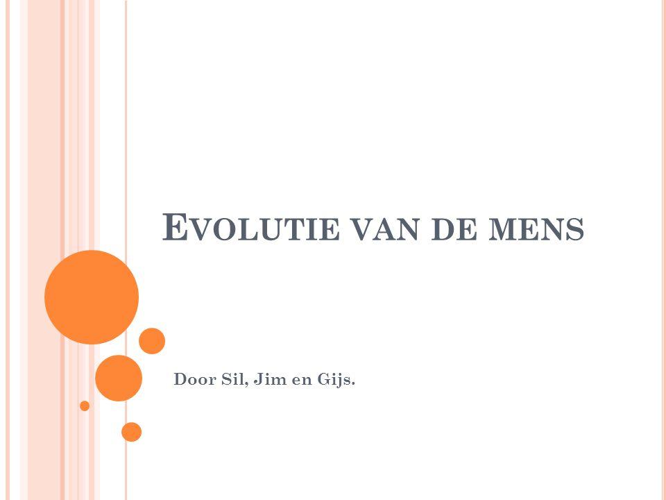 E VOLUTIE VAN DE MENS Door Sil, Jim en Gijs.
