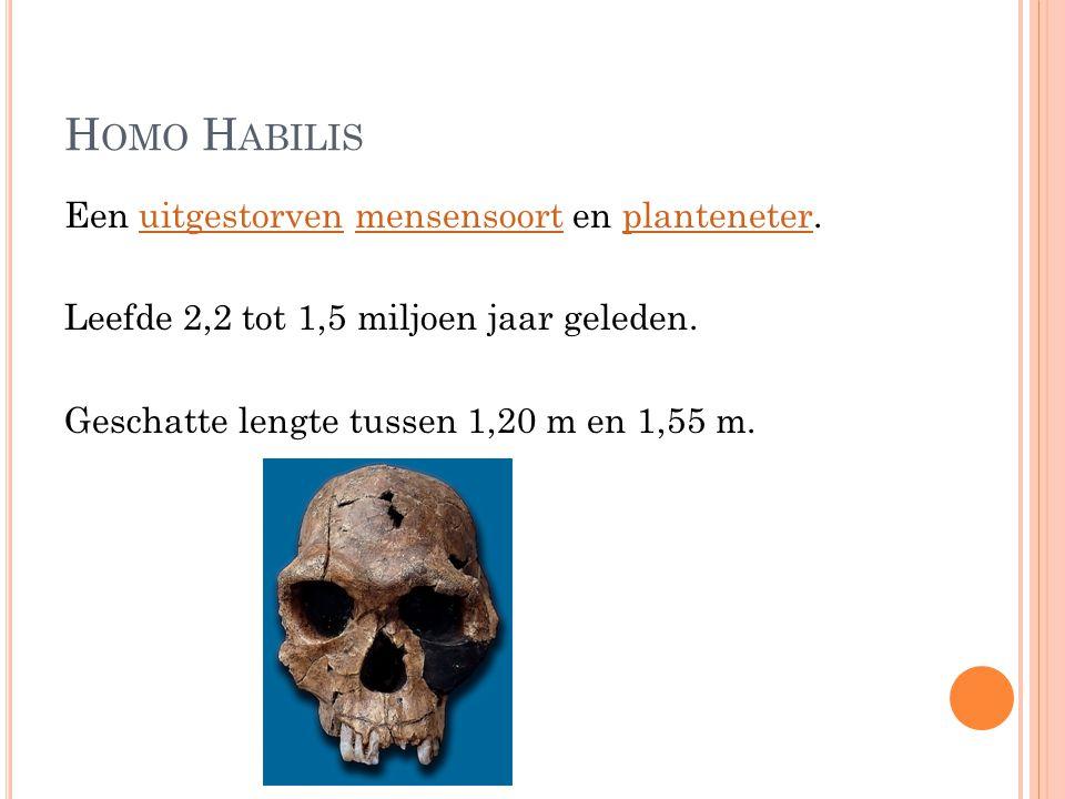 H OMO H ABILIS Een uitgestorven mensensoort en planteneter.uitgestorvenmensensoortplanteneter Leefde 2,2 tot 1,5 miljoen jaar geleden. Geschatte lengt