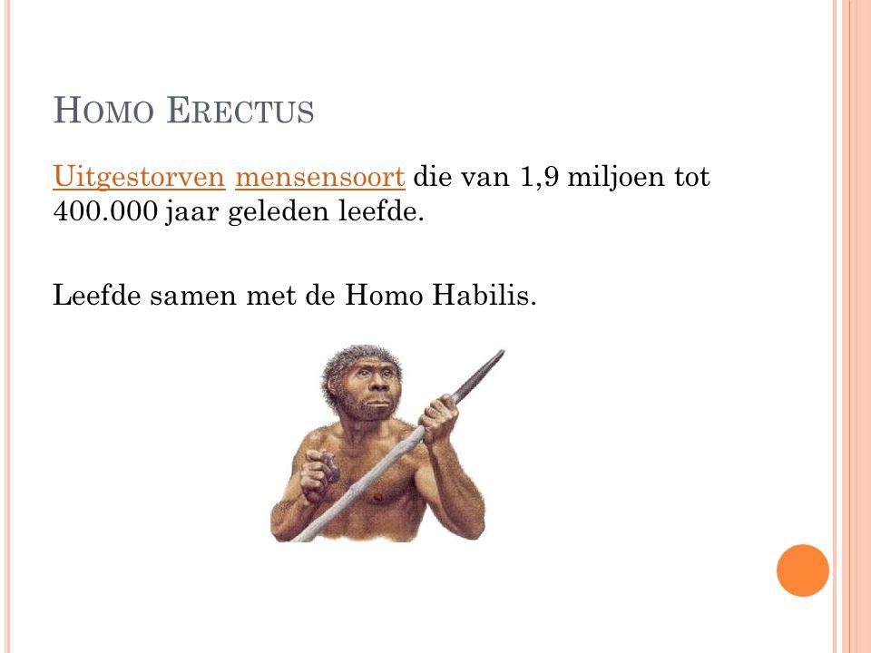 H OMO E RECTUS UitgestorvenUitgestorven mensensoort die van 1,9 miljoen tot 400.000 jaar geleden leefde.mensensoort Leefde samen met de Homo Habilis.