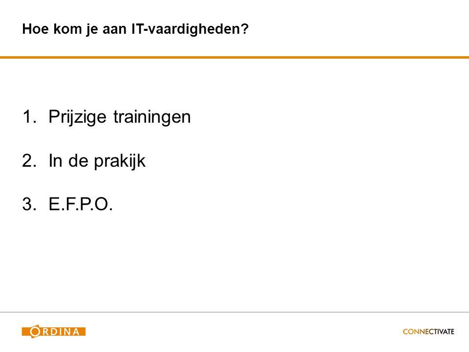 Hoe kom je aan IT-vaardigheden 1.Prijzige trainingen 2.In de prakijk 3.E.F.P.O.