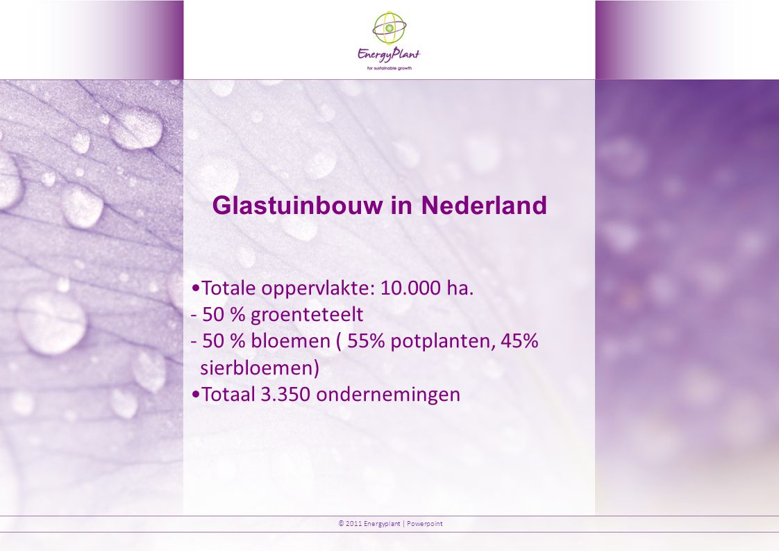 © 2011 Energyplant | Powerpoint Discussie