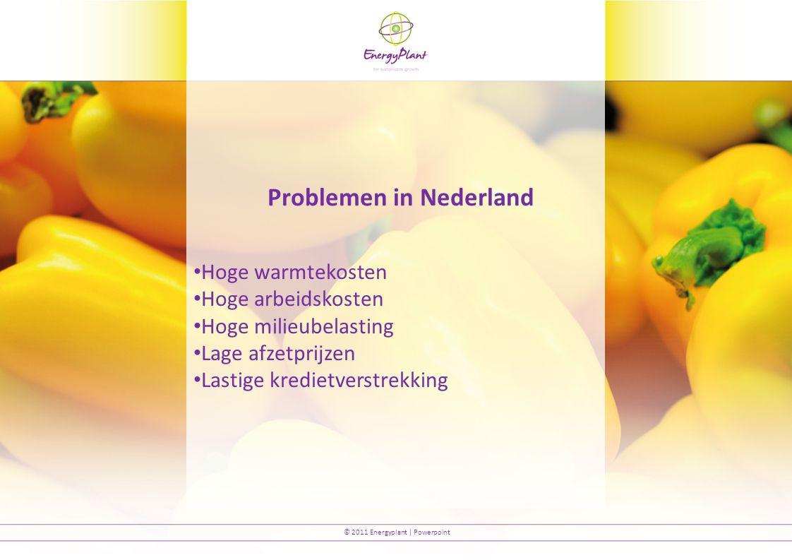 © 2011 Energyplant | Powerpoint Problemen in Nederland Hoge warmtekosten Hoge arbeidskosten Hoge milieubelasting Lage afzetprijzen Lastige kredietverstrekking