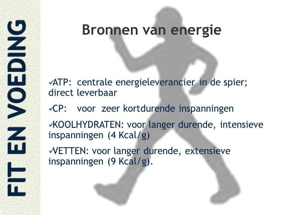 FIT EN VOEDING Bronnen van energie ATP:centrale energieleverancier in de spier; direct leverbaar CP:voor zeer kortdurende inspanningen KOOLHYDRATEN: v