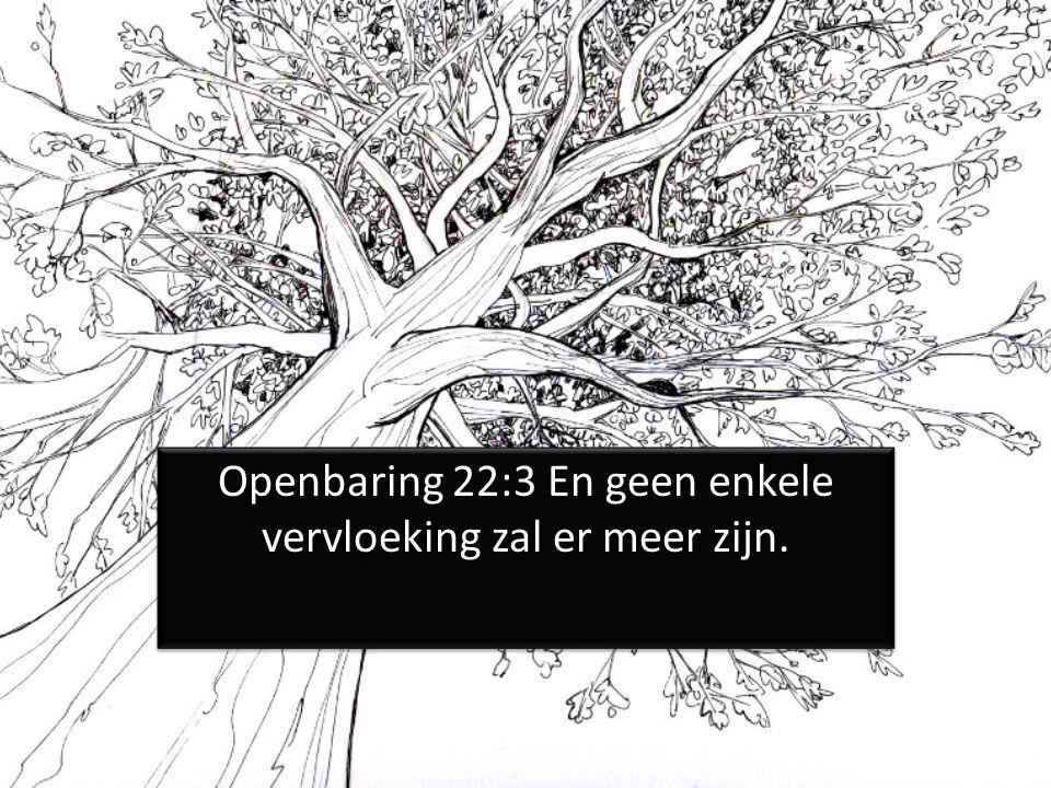 Openbaring 22:3 En geen enkele vervloeking zal er meer zijn.